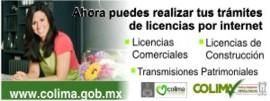 Trámites de Licencias por Internet