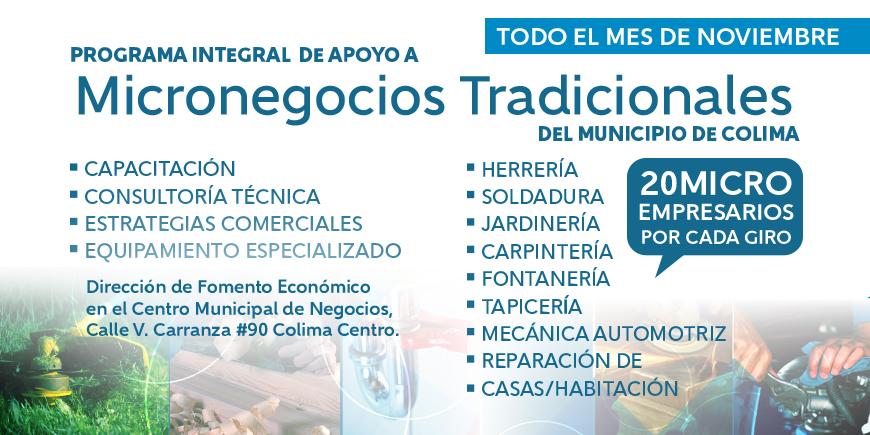 banner_micronegocios-2